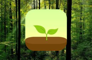 tap that app forest 300x196 - Como resistir às tentações do seu celular?
